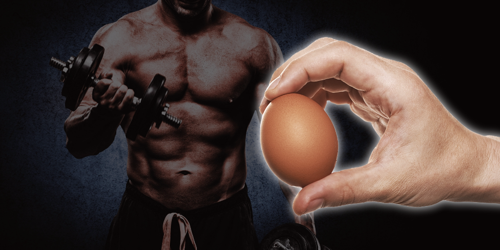 Egg-White-Protein-Powder-for-Muscle-Growth.png