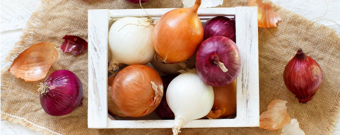All_you_need_to_know_about_._Onions.jpg
